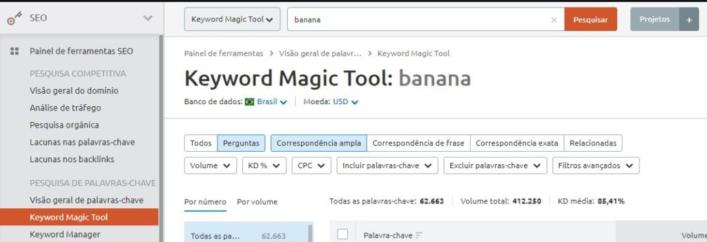 Perguntas Feature Snippets pela Kwyword Magic Tool
